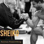 Compilación Rutinas Sheiko