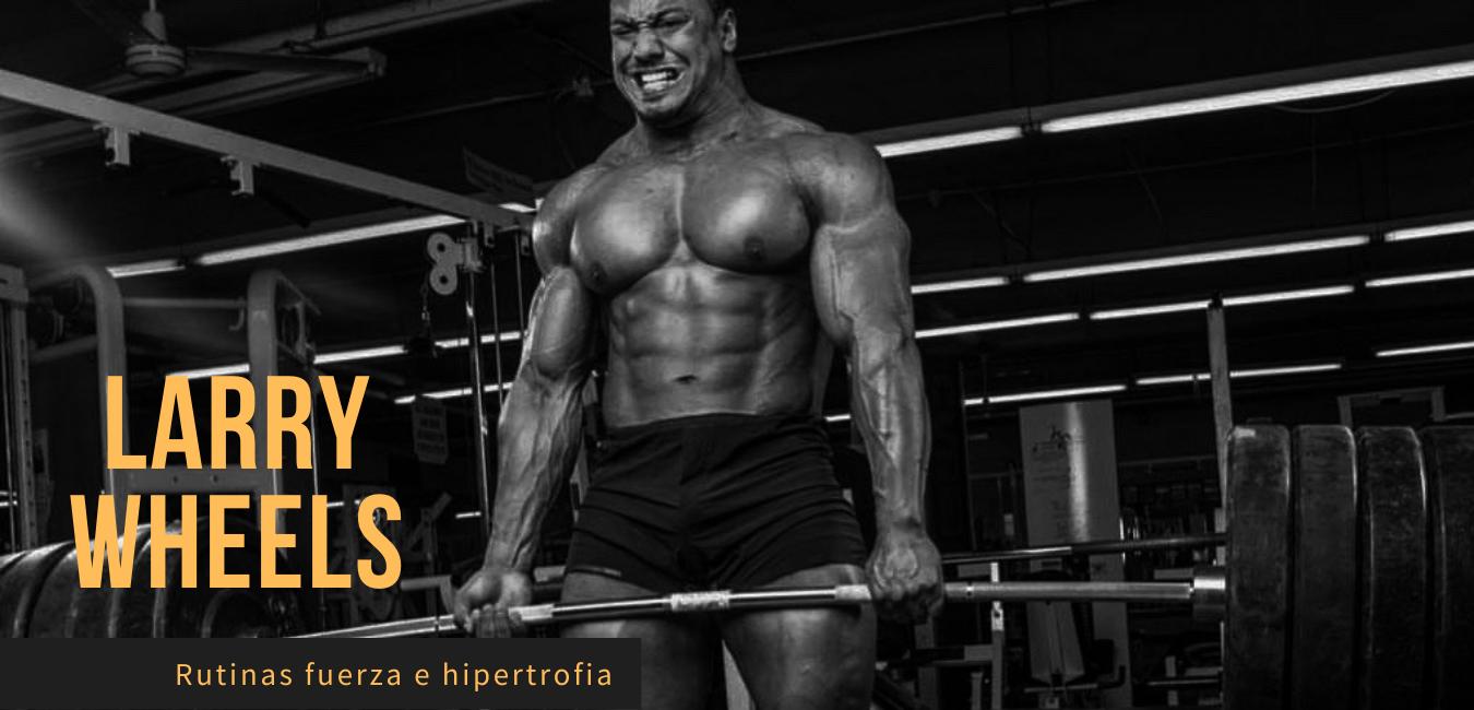 Rutinas Larry Wheels Fuerza Hipertrofia Powerlifting