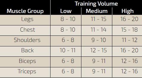 Guía de volumen de entrenamiento Mountain Dog
