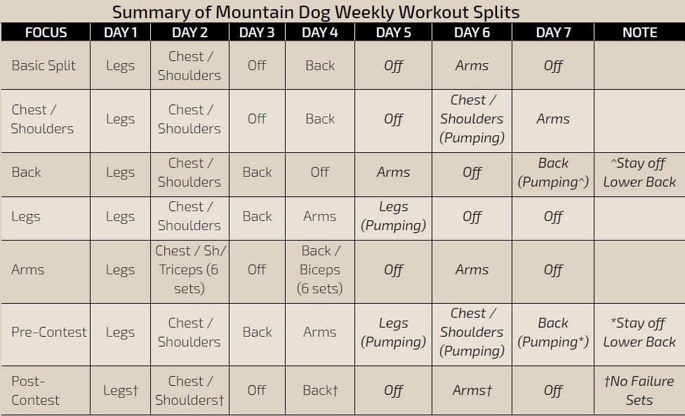 Dvisión de entrenamiento semanal en Mountain Dog